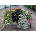Jardinière de barrière - 800 x 300 mm